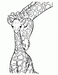 Small Picture Giraffe 5 coloring page from Giraffes category Select from 25143