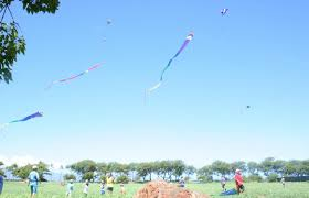 explore world of kites kite flying at chinese kite festival families fly kites during chinese kite festival at ka anapali north beach