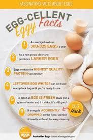 Chicken Egg Nutrition Chart 8 Best Egg Nutrition Images Eating Eggs Nutrition Eggs