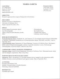 It Intern Resume Resume Examples For Internships For Students Resume Sample 68