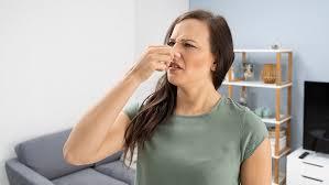 fix 6 common air conditioner smells