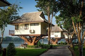 Tree House Hotel In South Africa Lion Sands Chalkley Treehouse Treehouse Accommodation
