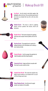bsa makeup brush 101 infographic