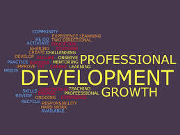 Proffessional Quotes Professional Quotes Lila Gaertners Education Portfolio