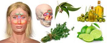 Resultado de imagen para Remedios naturales para la rinitis