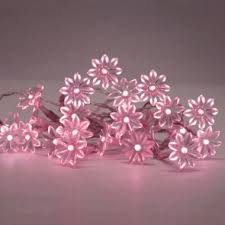 Solar Powered Fairy Lights  Buy Now At Low Prices From Strictly LEDu0027sSolar Panel Fairy Lights