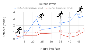 Optimal Ketosis How I Tracked My Blood Ketone And Glucose