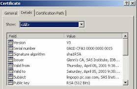 Digital Certificate Tls On Windows Setting Up Digital Certificates Encryption In Sas
