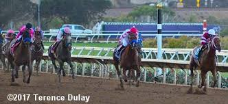 2017 Breeders Cup Charts 2017 Breeders Cup Classic Results