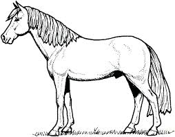 Race Horse Coloring Pages Printable Free Head Mustang Barrel Racing