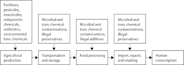 food supply and food safety issues in the lancet powerpoint slide