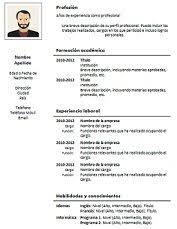 Formato De Curriculum Vitae Profesional
