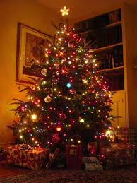 beautifully decorated christmas trees with multi coloured lights - Google  Search