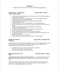 Digital Media Producer Sample Resume Impressive TVNew Media Producer Free Resume Samples Blue Sky Resumes