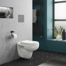 wall hung toilet with dual flush