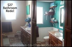 Bathroom Redo Simple Inspiration Design