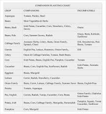 Sample Companion Planting Chart 7 Documents