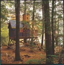 Lookout Tower Plans Free Tree House Look Out Tower Plans