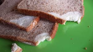 The Corner Of My Whole Wheat Bread Is White Bread Imgur