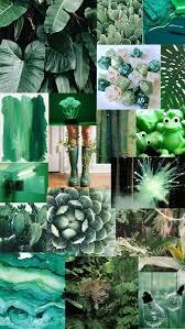 Green Aesthetic iPhone Wallpapers - Top ...
