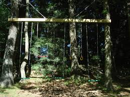 Tree Swings Swings To Hang From Trees Around 7 Years Ago I Put Up A Swing