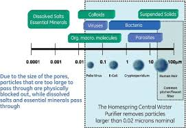 Membrane Pore Size Chart Mid September Occasional