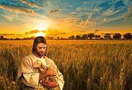 Resultado de imagen para función pastoral
