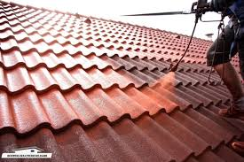 kildare roof painting 3