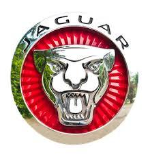 Jaguar Logo Bilder · Pixabay · Kostenlose Bilder herunterladen