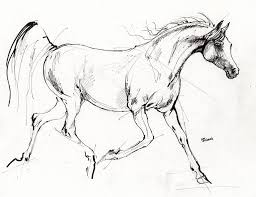 trotting horse drawing. Brilliant Trotting Fairytale Drawing  Trotting Arabian Horse Quick Sketch By Angel Ciesniarska To A