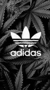 11 swag wallpaper for iphone 6. Black Dope Wallpapers For Iphone 1080x1920 Download Hd Wallpaper Wallpapertip