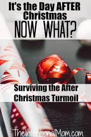 190 best Organizing Christmas images on Pinterest   Organizing ...