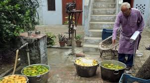 Image result for small mangoes in village market