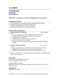 Banking Sales Resume Resume format for Banking Sales Najmlaemah 1