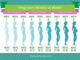 Pregnancy Baby Chart Week By Week Baby Trimesters Chart Pregnancy Movement Chart Pregnancy