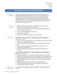 Luxury Telecom Account Manager Resume Pattern Documentation