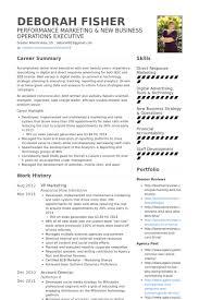 Marketing Resume Examples Amazing Vp Marketing Resume Samples VisualCV Resume Samples Database Resume