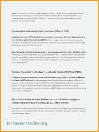 Resumes For Mba Best Resume Template Whizzme Adorable Buy Resume Templates