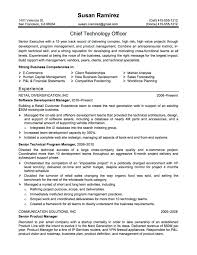 cto resume sample  woltrancom