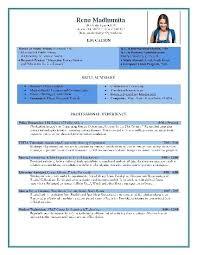 Popular Resume Templates Interesting Popular Cv Template Mediaschool
