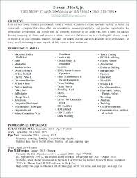 Functional Resume Sample Excellent Resume Examples With Transferable