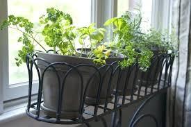 indoor window garden. indoor window planter kitchen garden get your city mo from best box plants r