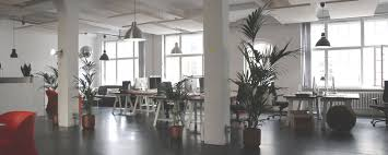 Office Design And Decoration