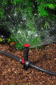 garden irrigation system. Close Up View Of Sprinkler Head In Use A Landscaped Garden Bed Irrigation System D