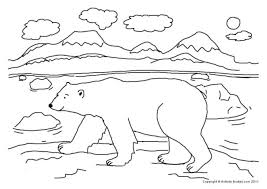 Small Picture Coloring Pages Draw A Polar Bear