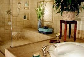 Bathroom Remodeling Chicago Bath Renovation Remodelers Designers Classy Bathroom Remodeling In Chicago