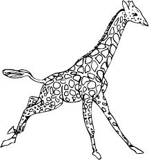 Kleurplaat Giraffe Dieren Kleurplaat Animaatjesnl