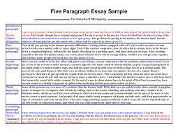 essay paragraph argumentative essay personal statement  paragraph essay