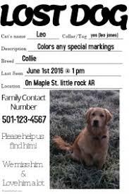 Dog Flyer Template Free Found Dog Flyer Under Fontanacountryinn Com
