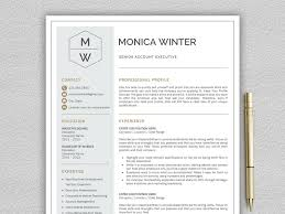 Modern Resume Template 2013 Resume Template Cv Template By Resume Templates On Dribbble